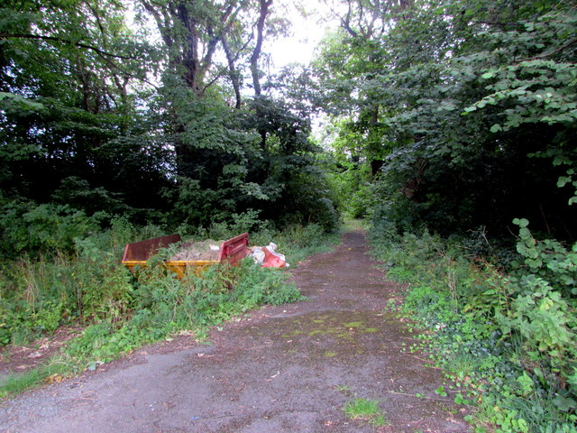 Road into Upper Common, Gilwern