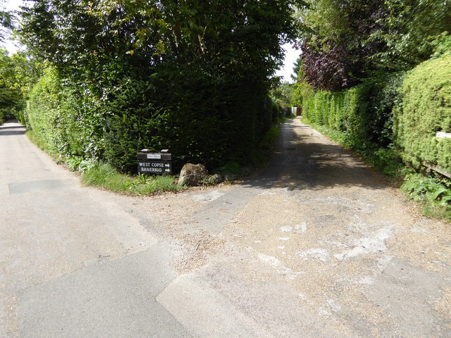 London Countryway in Surrey (29)