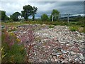 NS3876 : Waste ground by Renton Road by Lairich Rig