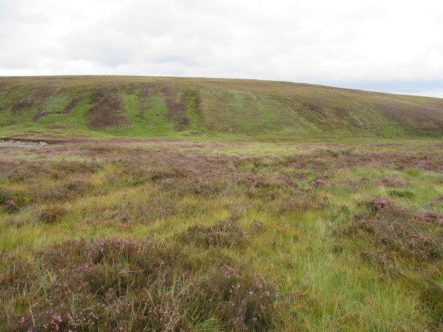 View north-east across Geldie Burn (hidden) near Braemar