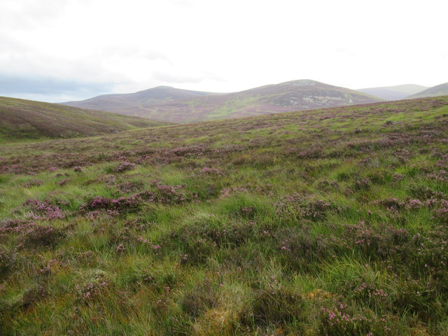 View east from foot of Cnapan Garbh near Braemar