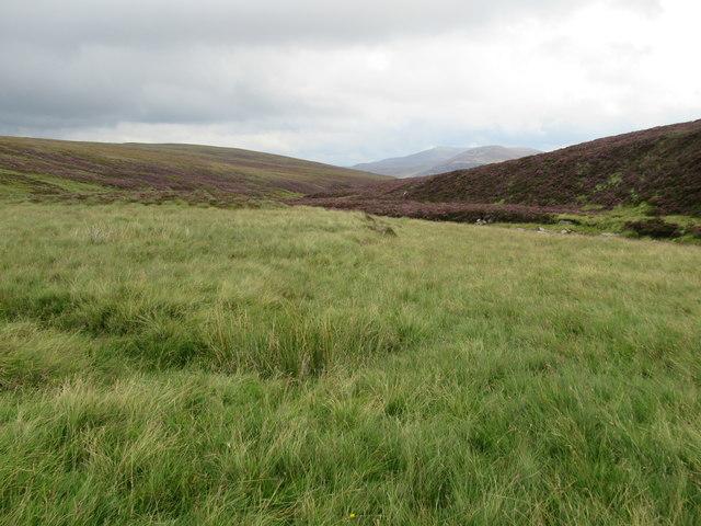 Well-drained grassy bank by Bynack Burn near Braemar