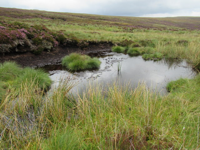 Peaty wallow used by deer by Bynack Burn near Braemar