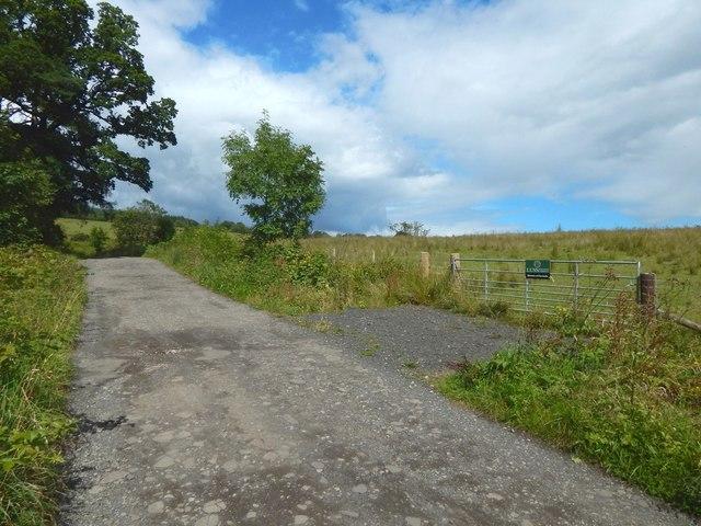 Track to Ardencaple Farm
