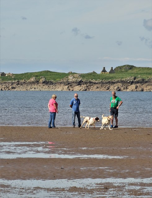 Dog walkers on the shore