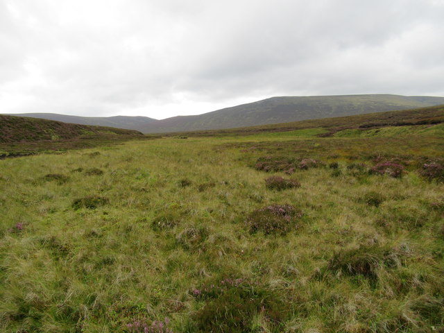 Grassy flat by Bynack Burn near Braemar