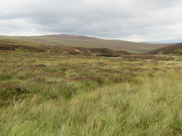 Cnapan Garbh from near Bynack Burn on Mar Estate,Braemar