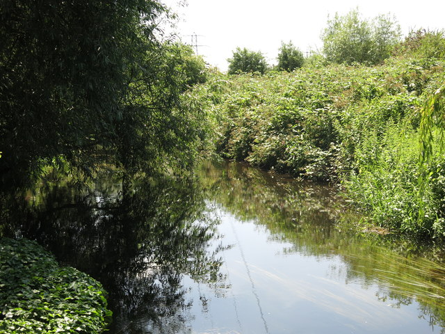 The River Colne northeast of Palmer's Moor Farm (2)