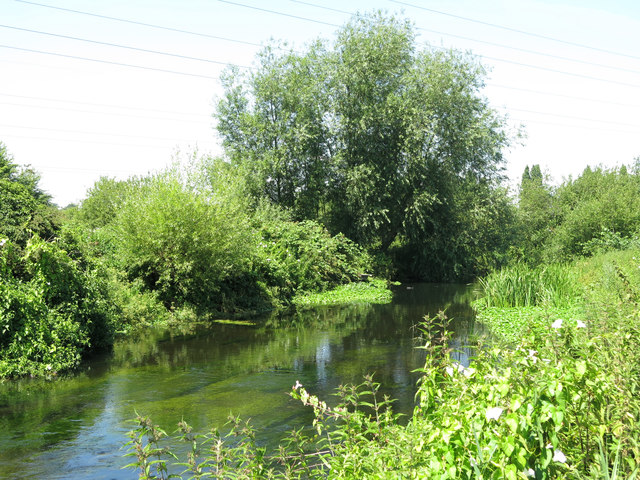 The River Colne northeast of Palmer's Moor Farm (4)