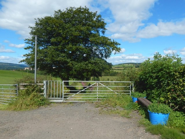 Footpath to the Haldane