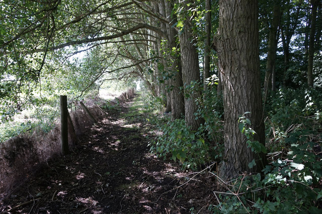 Path near Standingholme Farm