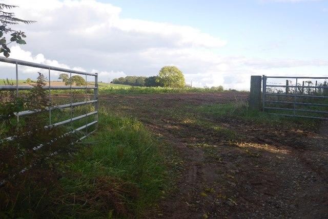 Field near Pencombe