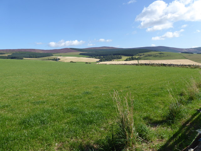 A view towards Davoch Plantation
