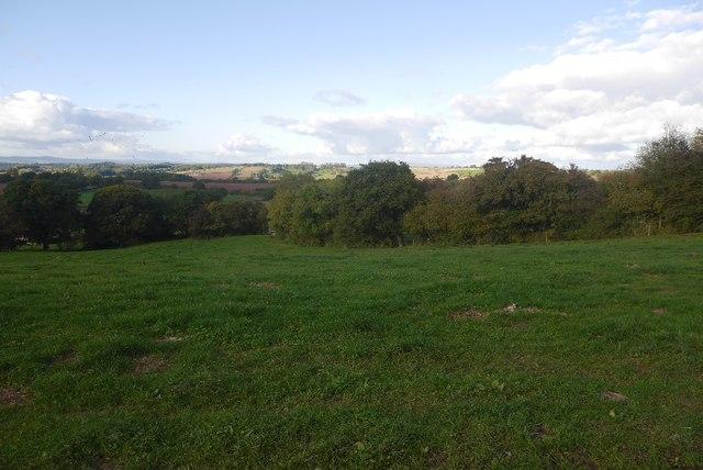 West side of Hegdon Hill
