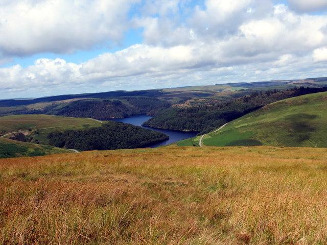 Llethrau Mynydd Trawsnant / Slopes of Mynydd Trawsnant