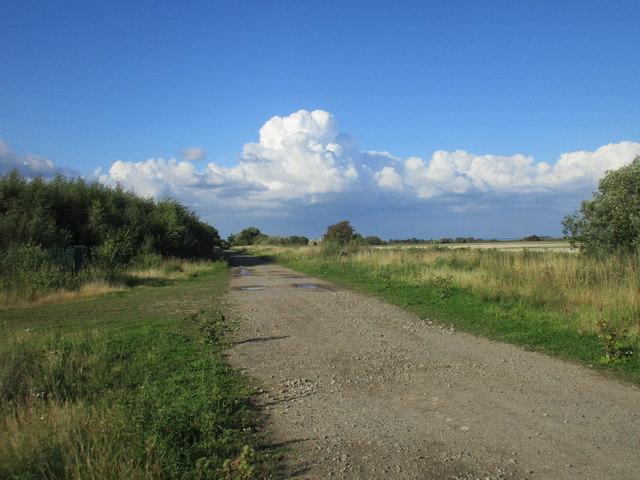 Roadway to Top Moors Farm