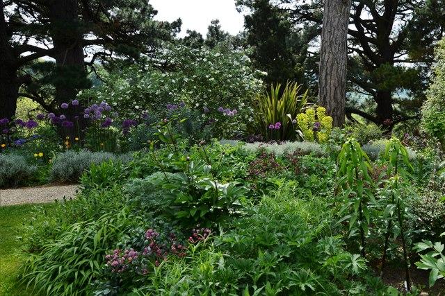 Kiftsgate Court Garden: The Wide Border 1