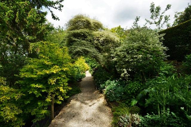 Kiftsgate Court Garden: The Yellow Border