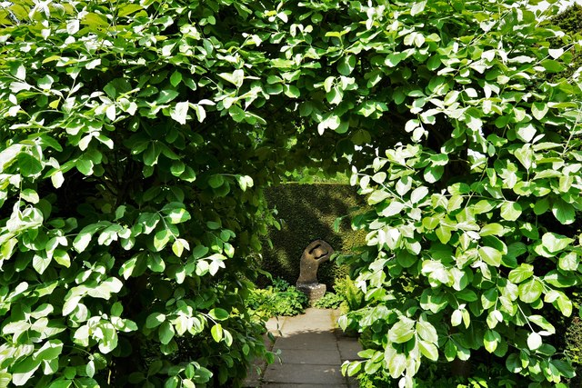 Kiftsgate Court Garden: The leafy arch by the Yellow Border