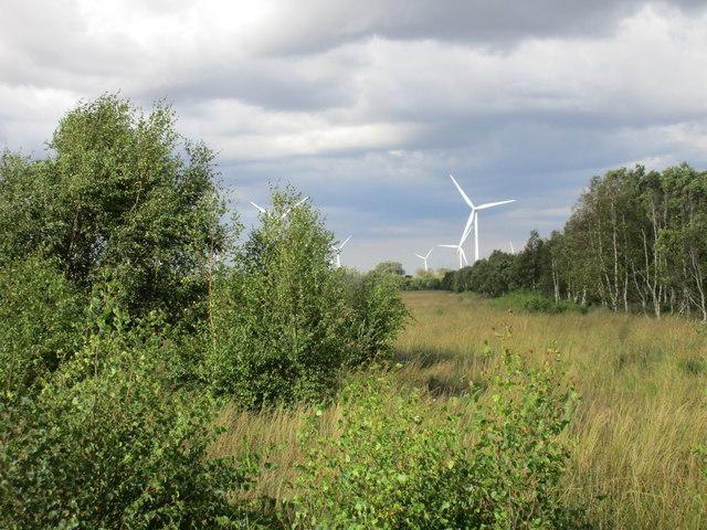 Goole Moors and Goole Fields wind farm