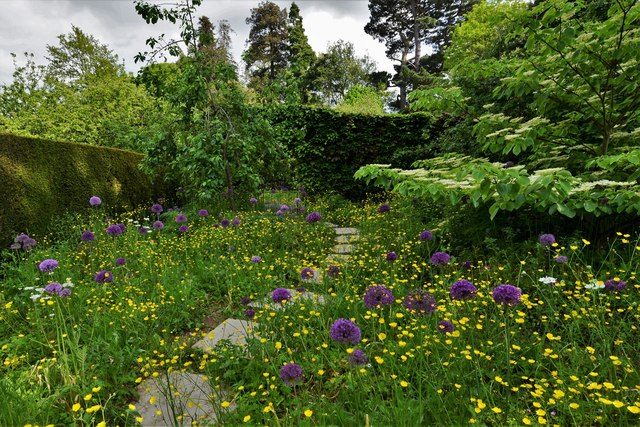 Kiftsgate Court Garden: The Wild Garden 1
