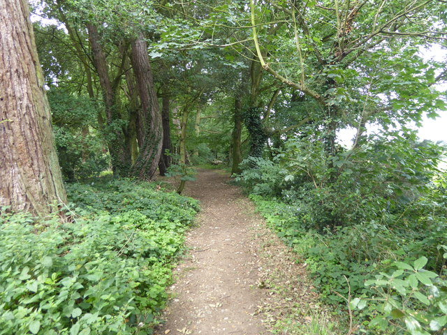 The London LOOP in Havering Country Park