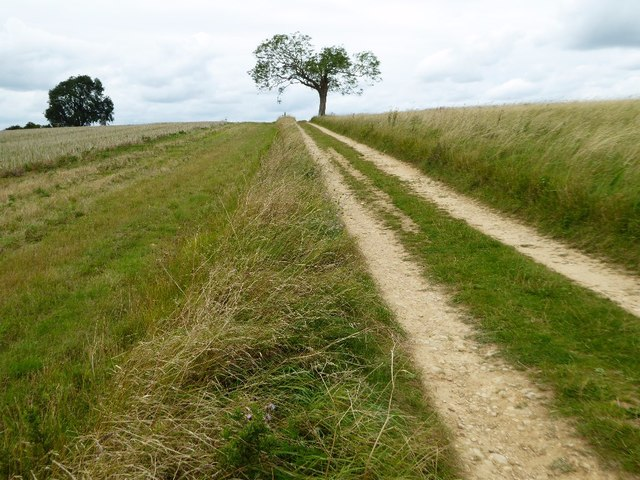 Track to the top of Bredon Hill