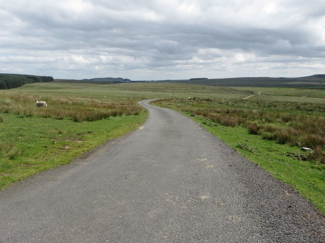 Country road east of Rushy Hill