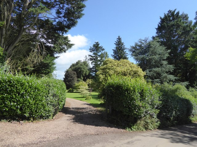 Specimen trees in the garden of Cruwys Morchard House