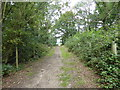 TQ5092 : Path out of the woodland in Havering Country Park by Marathon