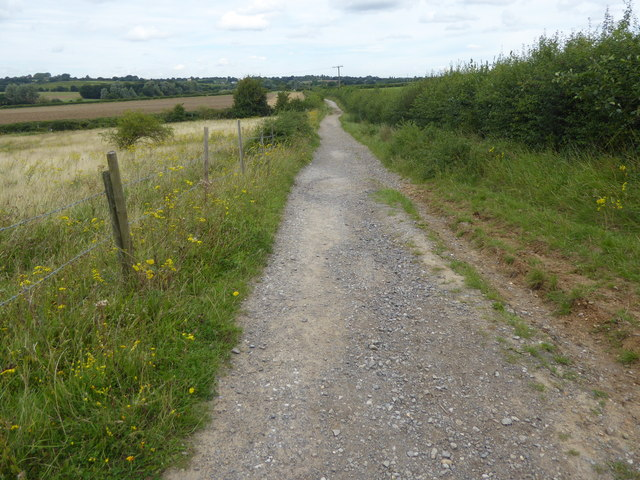 Track near Havering Country Park