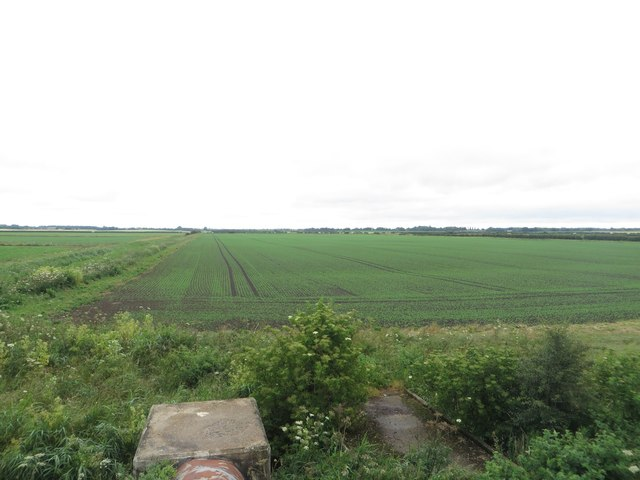Arable land beside the Holderness Drain