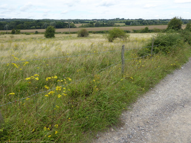 View from a track near Havering Country Park