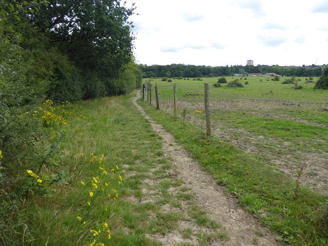 The London LOOP on the way to Havering Country Park