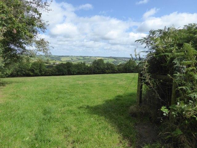 Field north of Hookway Lane