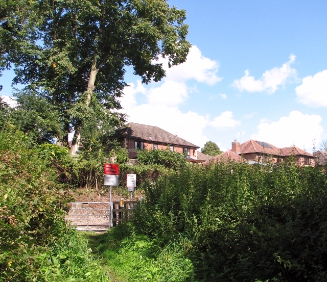 Houses above the railway line skirting Brundall