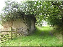 SS8911 : Cob building at Little Heath by David Smith
