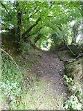 SS8911 : Ford Lane, a footpath from Little Heath to South Ford  by David Smith