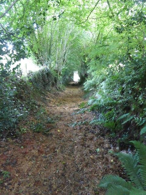 Ford Lane, a footpath to Little Heath