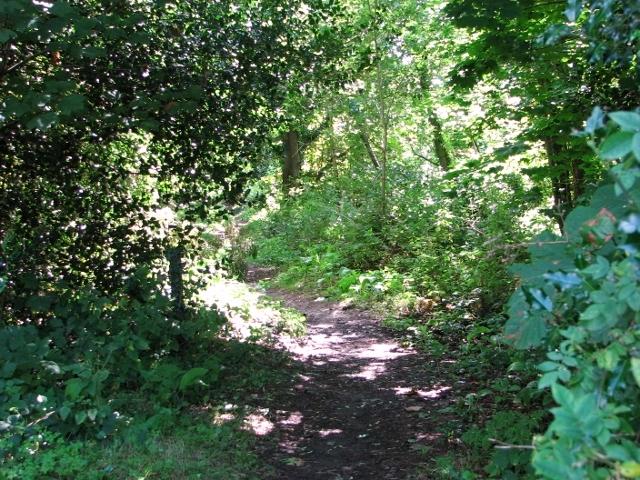 Path traversing Church Fen