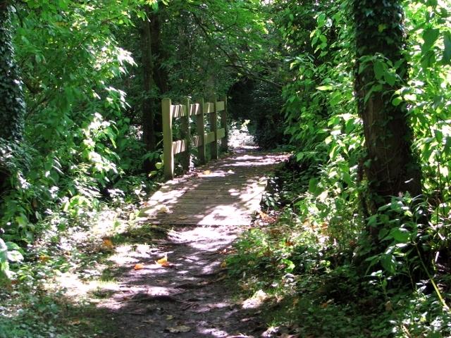 Footbridge on the path through Church Fen
