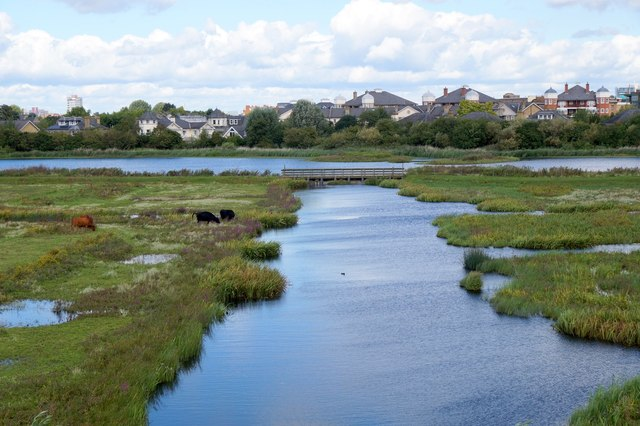 The grazing marsh from the Peacock Tower at the London Wetland Centre, Barnes