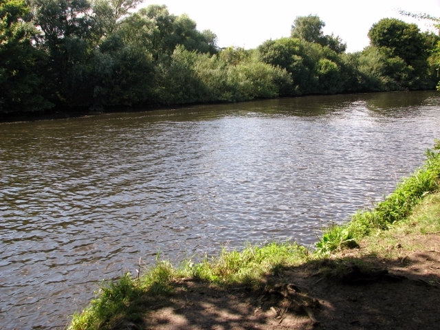 The River Yare south of Brundall