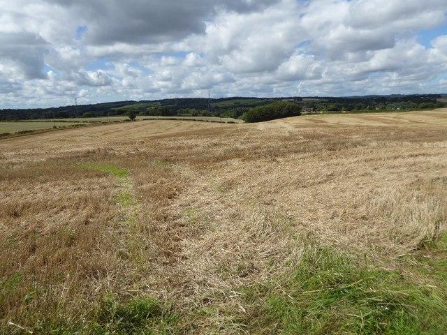 Stubble fields near Ashwood
