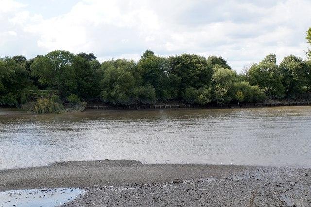 The Thames below Barnes Bridge