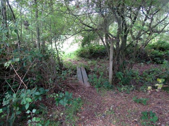 Footbridge over drainage ditch