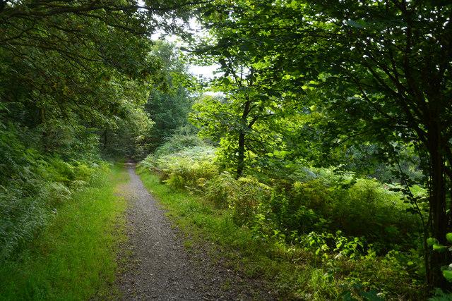Neath Port Talbot : Bryn Cycleway