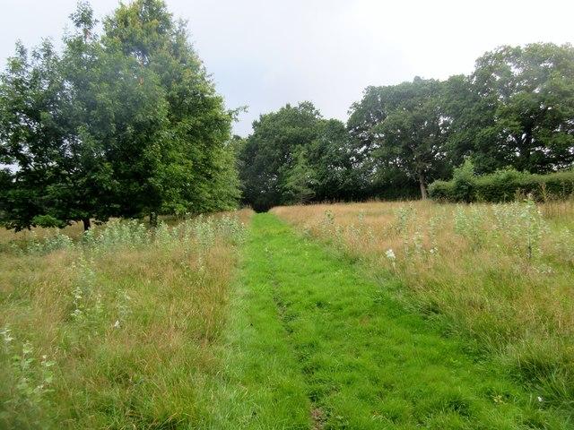 Mowed footpath