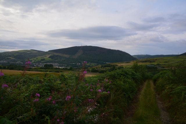 Neath Port Talbot : Grassy Track