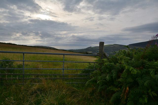 Neath Port Talbot : Grassy Field & Gate